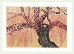 http://www.fujiarts.com/japanese-prints/Namiki/12WeepingCherry15f.jpg