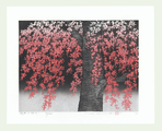 http://www.fujiarts.com/japanese-prints/Namiki/11WeepingCherry2f.jpg