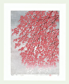 http://www.fujiarts.com/japanese-prints/Namiki/7WeepingCherry6f.jpg
