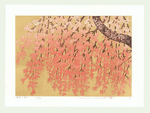 http://www.fujiarts.com/japanese-prints/Namiki/2WeepingCherry5f.jpg